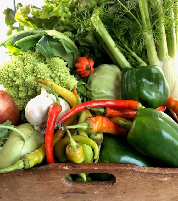 Cassetta verdura di stagione 8 kg